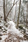 jeremy-winter-11