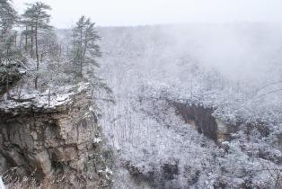 jeremy-winter-5